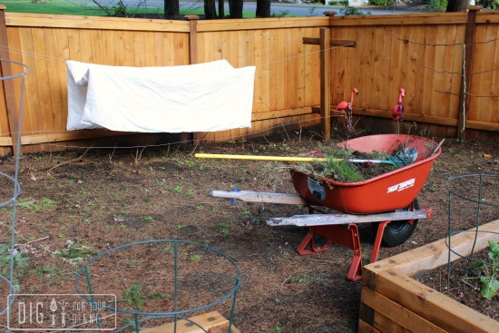 raspberry trellis clothesline