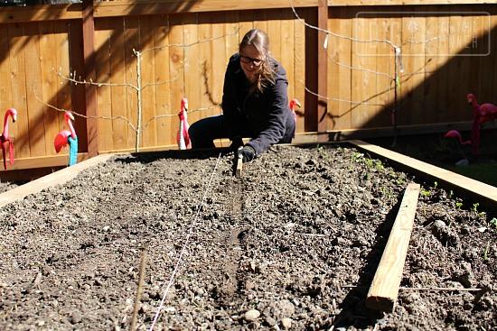 garden soil boxes