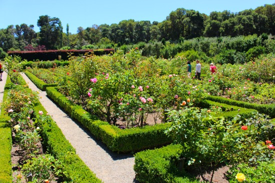 -filoli mansion garden tour
