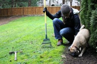 A Week in Garden Photos – December 25th – 31st