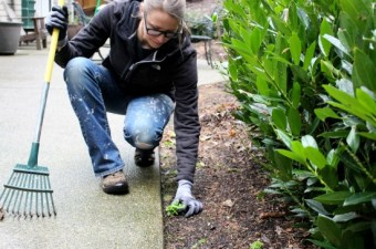 A Week in Garden Photos – January 23rd – 29th