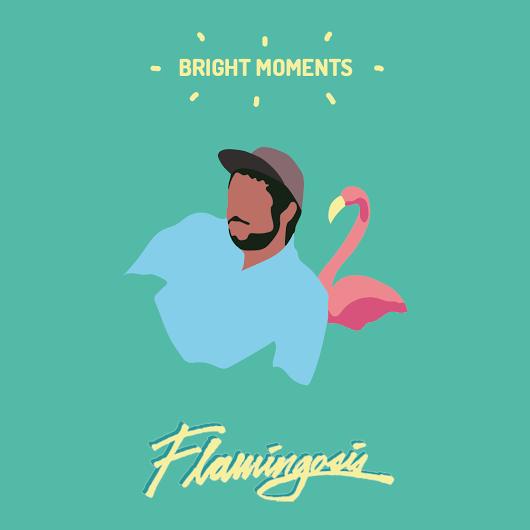 flamingosis-s