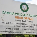 7 get 5-years sentences for Wildlife crimes