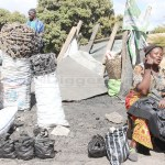 Martha Zimba earns a living from selling charcoal  along Lusaka's Alick Nkhata road - Picture by Tenson Mkhala on July 10, 2018