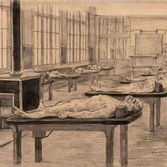 Interior of a dissecting room with cadavers laid out on tables. Drawing by Paul Ronard late 19th early 20thc via Wellcome Images