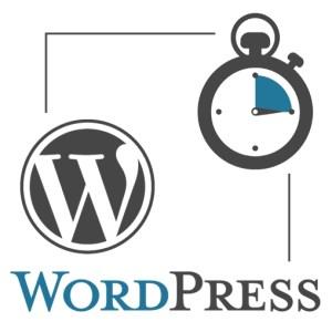 Visioconférence WordPress 15 minutes