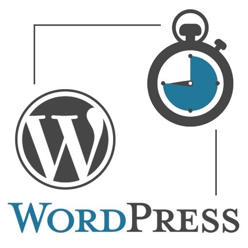 Visioconférence WordPress 45 minutes