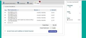 online payment screen shot