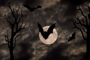 bat with moon