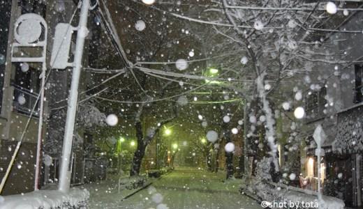 降ってる雪を撮影してみる