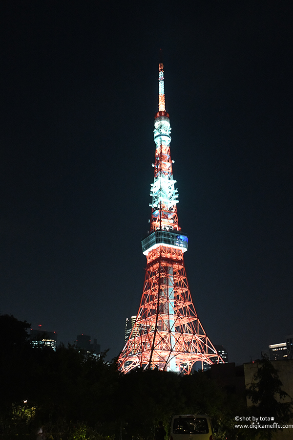プリンスタワー中庭から東京タワーを撮影