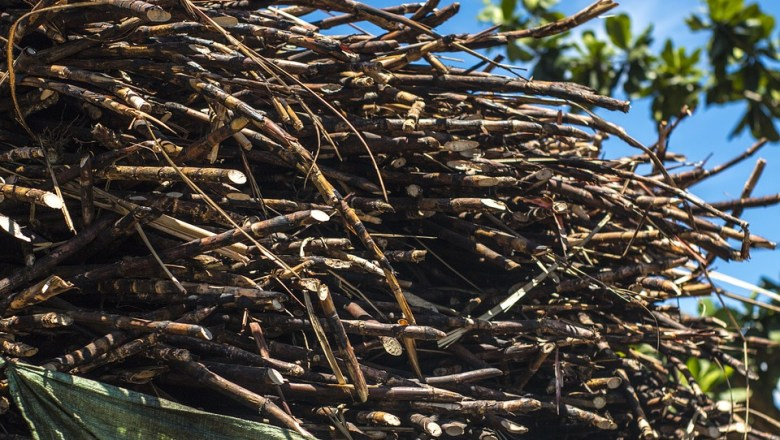 NFSP lauds order to intensify drive vs. sugar smuggling