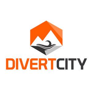 Logo Portfolio Digics 6