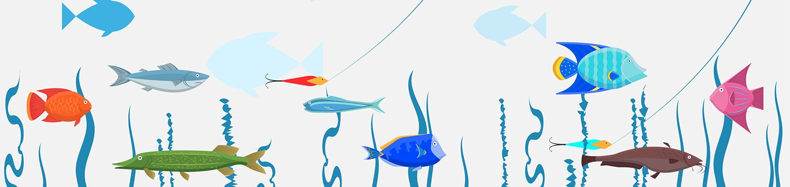 fishing-eye