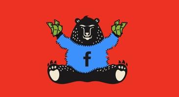 bear_facebook-eye