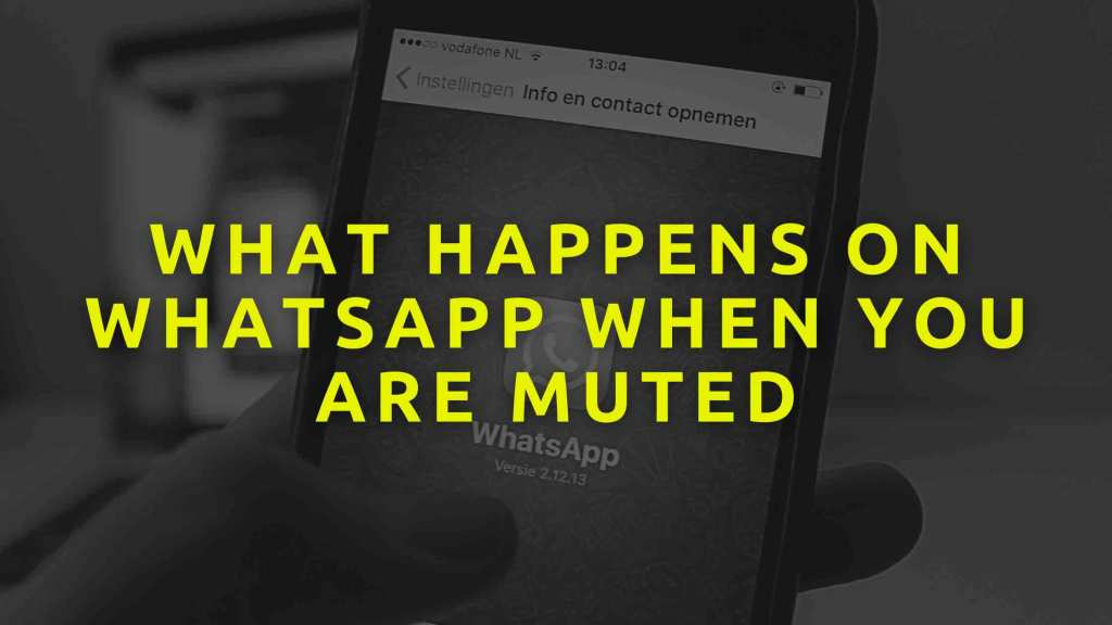 What-happens-on-WhatsApp-when-you-are-Muted