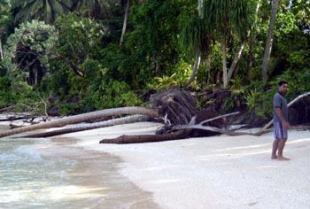 日本の近い将来。水没危機の島国「ツバル」