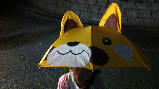 kids-raccoon-umbrella02
