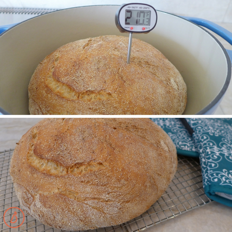 Easy Italian Farm Bread is done when an instant read thermometer inserted in the center of the bread reads 210 F. Recipe and ideas at diginwithdana.com