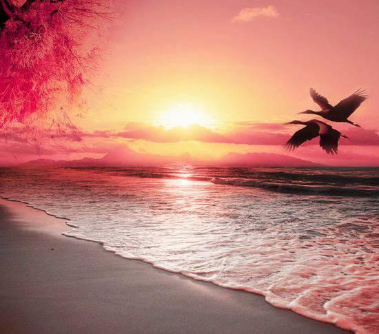 Foto paesaggio romantico dallalbum Foto profilo di