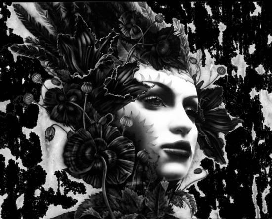 Fiore nero