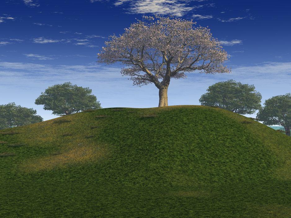Environments Digipiph
