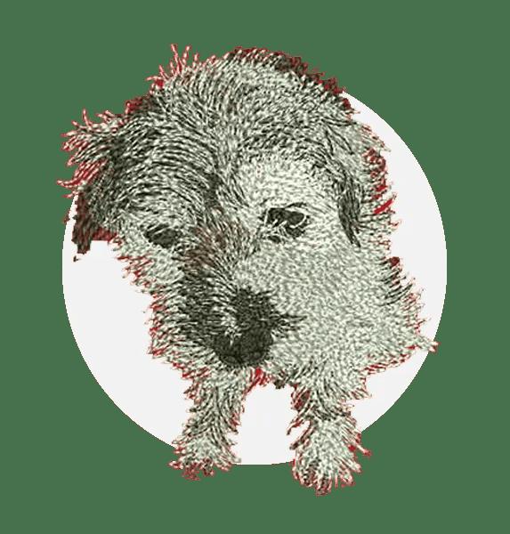 embroidery digitizing portfolio