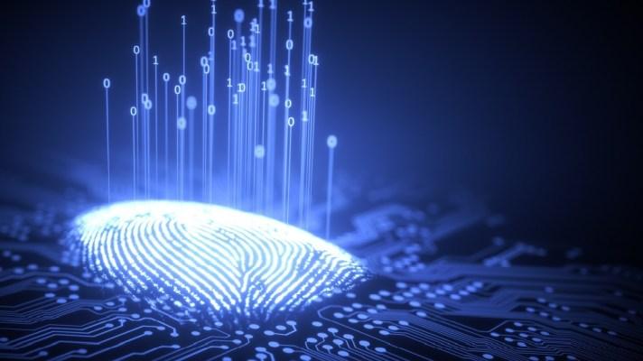 UK Government Biometrics