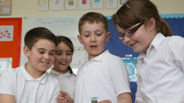 STEM Education Scotland