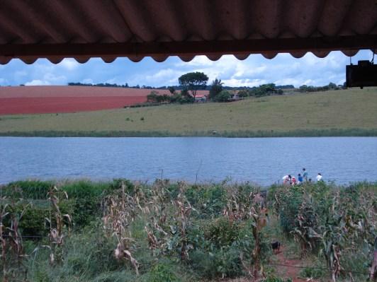 Crédito: Ana Paula Schenfel, Alfenas- MG, plantação de milho