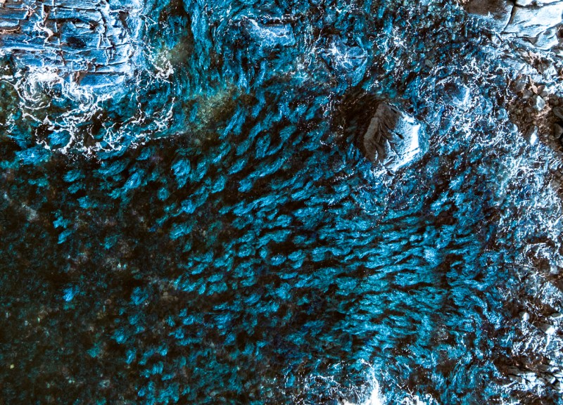Altered Colour Profile in Raw Image Data | Blue Algeas | Marc Ihle 2018