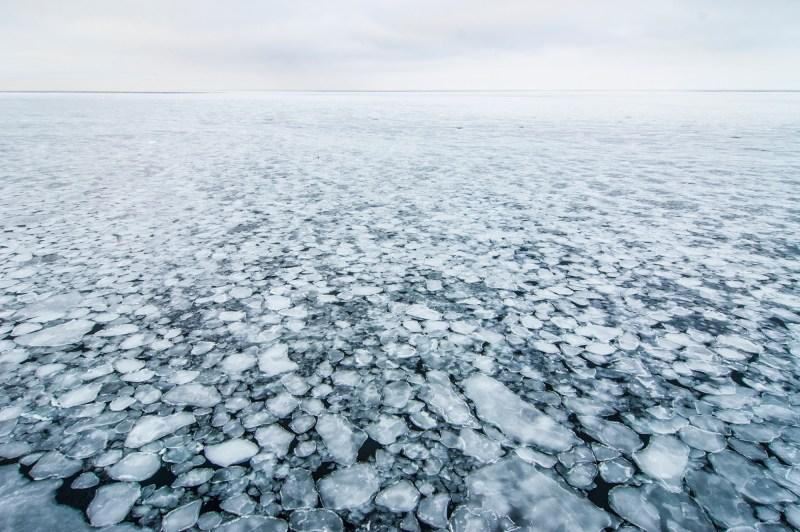 2017-Barents-Sea-DSC_3037-foto-marc-ihle-2000px