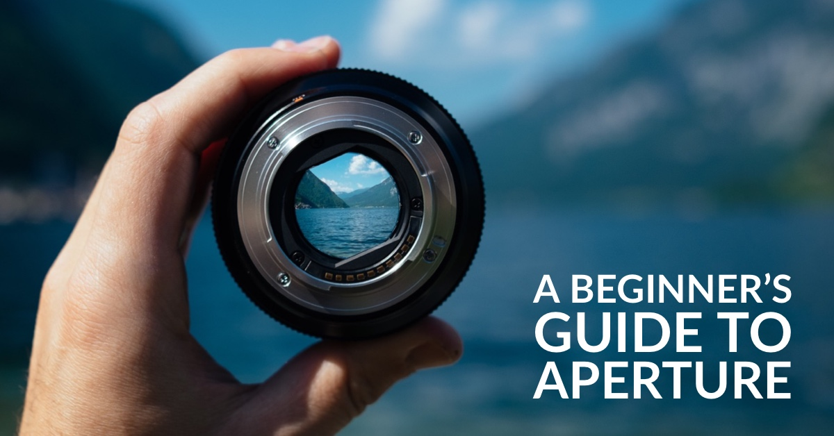 An Introduction to Aperture in Photography