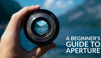 Introduction to Aperture in Photography