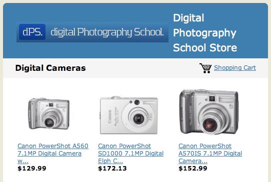 Digital Photography School Store