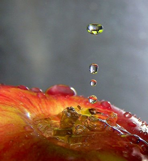 How to Photograph Water Drops