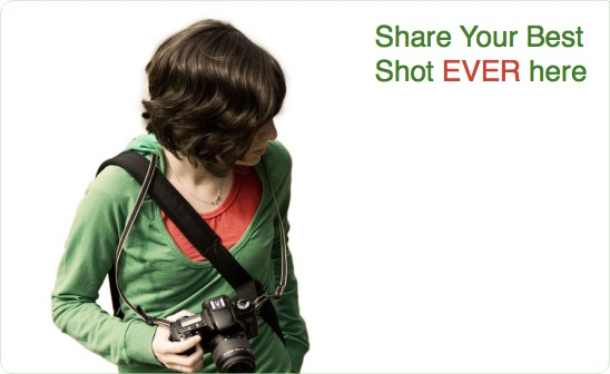 best-shot.png