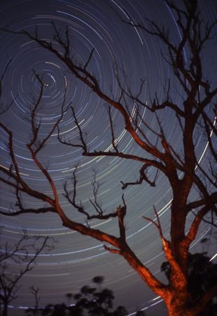 Star-Trails-1.jpg