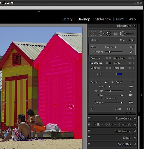 Introduction to Spot Fixing with the Adjustment Brush in Lightroom