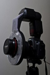 Canon 5D Mk2 w/ Ray Flash