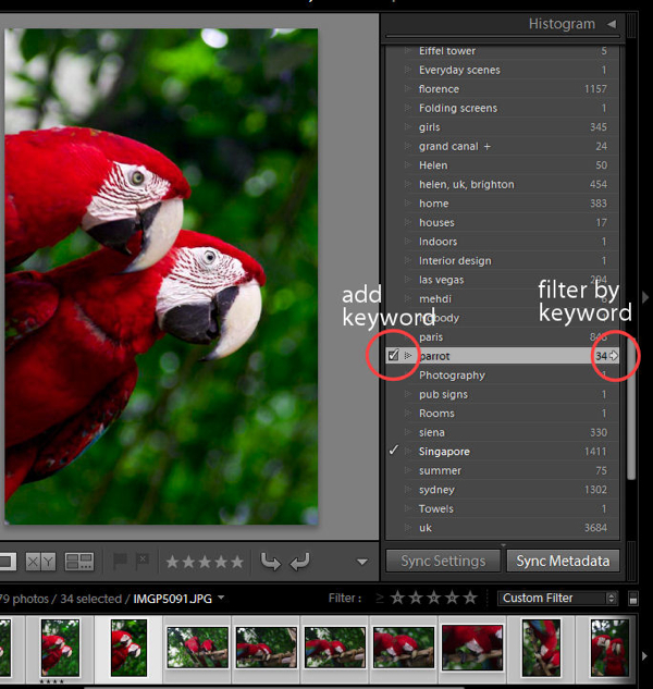 Lightroom-Mistakes-1