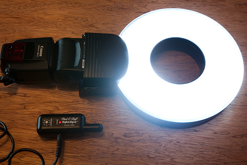 Orbis ring flash reviews...