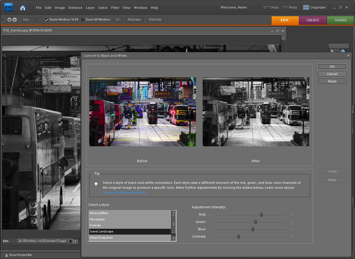 An adjustable black and white conversion in photoshop elements baditri Images