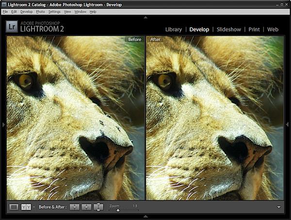 spot_before-after.jpg