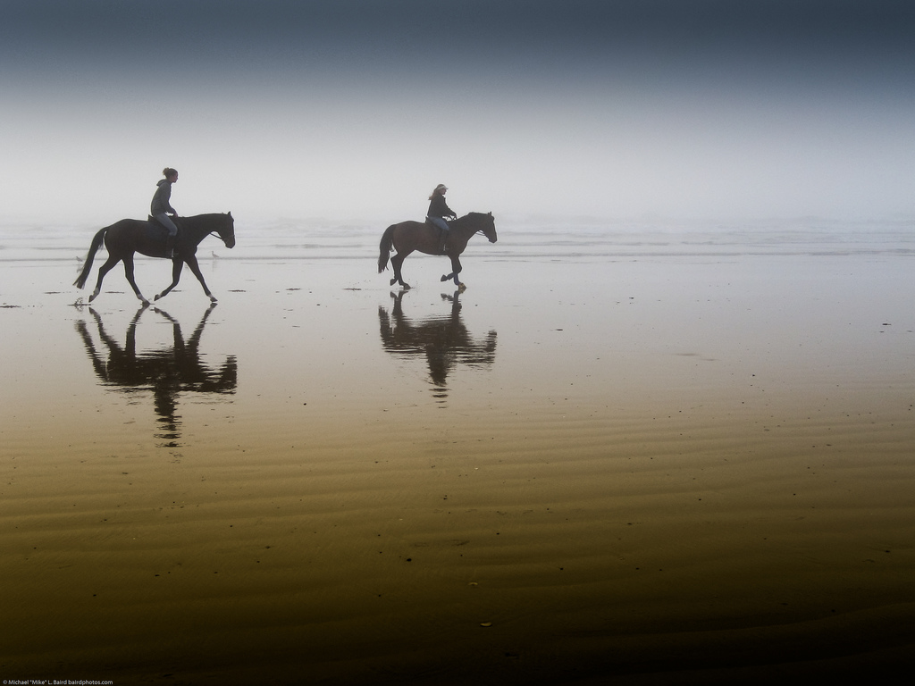 Two equestrian riders