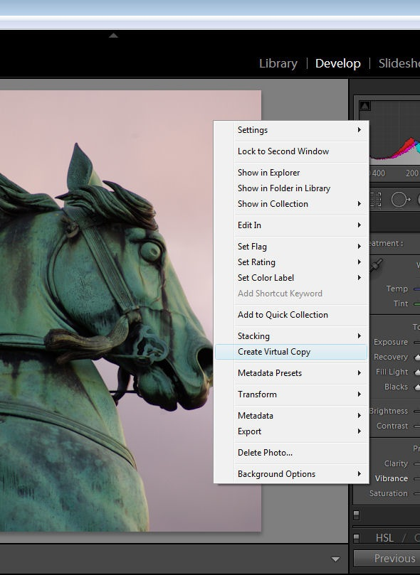 Working with Virtual Copies in Lightroom
