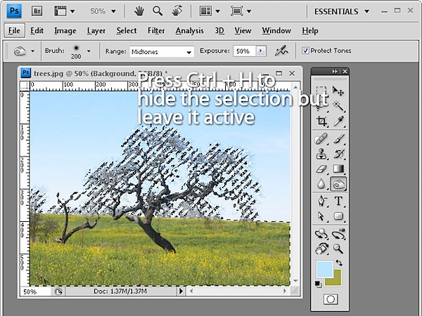 10-photoshop-features-6.jpg