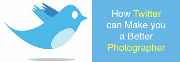 How Twitter can Make you a Better Photographer