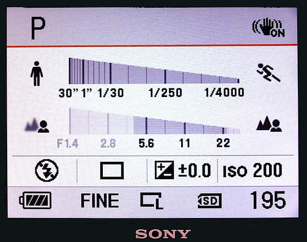 Sony A380 LCD display