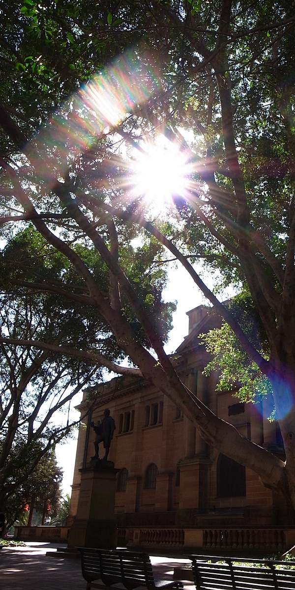 Mitchell Library and sun flare.jpg